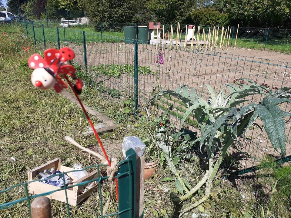 les jardins solidaires1
